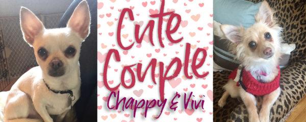 Vivi & Chappy